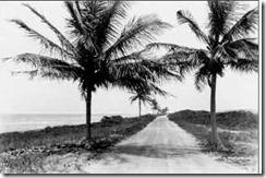 Ocean Drive 1924
